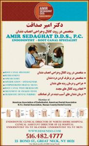 AMIR SEDAGHAT DDS, PC